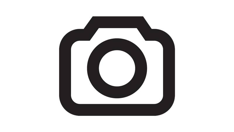 The Agony and the Ecstasy 1965