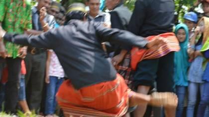 Tradisi Adu Betis Sulawesi Selatan